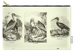 Page From The Pictorial Museum Of Animated Nature  Carry-all Pouch by English School