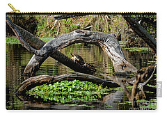 Painted Turtles Carry-all Pouch by Paul Mashburn