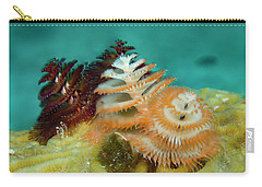 Carry-all Pouch featuring the photograph Pair Of Christmas Tree Worms by Jean Noren