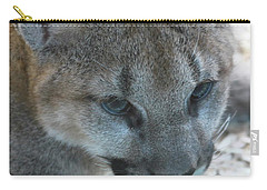 Carry-all Pouch featuring the photograph Palus by Laddie Halupa