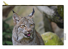 Panting Lynx Carry-all Pouch