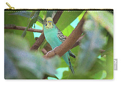Parakeet Carry-all Pouch