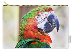 Parrot Carry-all Pouch by Stephanie Hayes