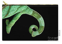 Parson Chameleon, Calumma Parsoni On Black Background, Top View Carry-all Pouch by Sergey Taran