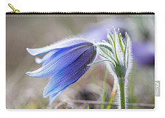 Pasque Flower's Silver Grey Hair Carry-all Pouch