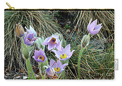Carry-all Pouch featuring the photograph Pasqueflower by Michal Boubin