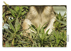 Patas Monkey Carry-all Pouch by Suzanne Luft