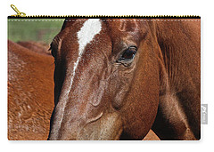 Carry-all Pouch featuring the photograph Patch by Ann E Robson