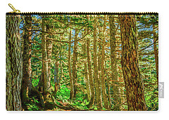 Path In The Trees Carry-all Pouch