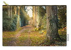Path Into The Light Carry-all Pouch