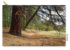 Path To Enlightenment 1 Carry-all Pouch