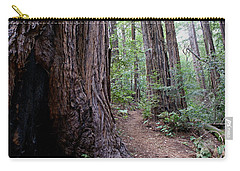 Pathway Through A Redwood Forest On Mt Tamalpais Carry-all Pouch
