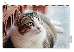 Carry-all Pouch featuring the photograph Peace by Laura Melis