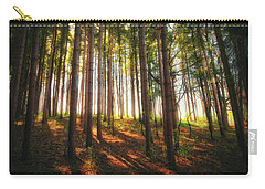 Peaceful Wisconsin Forest 2 - Spring At Retzer Nature Center Carry-all Pouch by Jennifer Rondinelli Reilly - Fine Art Photography