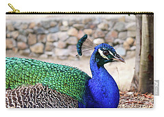 Pretty Proud Peacock Carry-all Pouch