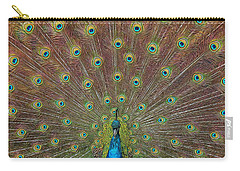 Peacock Fanfare Carry-all Pouch by Diane Alexander