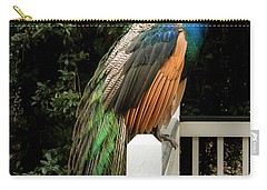 Carry-all Pouch featuring the photograph Peacock On A Fence by Jean Noren