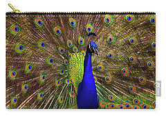 Peacock Showing Breeding Plumage In Jupiter, Florida Carry-all Pouch by Justin Kelefas