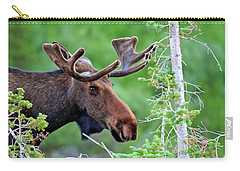 Carry-all Pouch featuring the photograph Peaking Moose by Scott Mahon