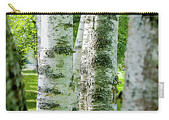 Carry-all Pouch featuring the photograph Peek A Boo Birch by Greg Fortier