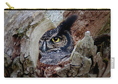 Peek A Boo Owl Carry-all Pouch
