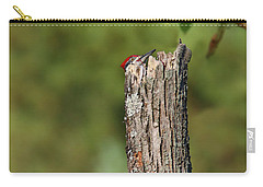 Peek A Boo Pileated Woodpecker Carry-all Pouch