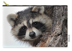 Carry-all Pouch featuring the photograph Peek-a-boo by Shane Bechler