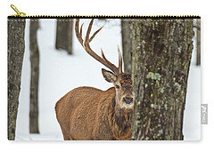 Carry-all Pouch featuring the photograph Peekaboo.. by Nina Stavlund