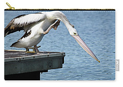 Carry-all Pouch featuring the photograph Pelican Beauty 66633 by Kevin Chippindall