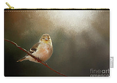 Carry-all Pouch featuring the photograph Perched Goldfinch by Darren Fisher