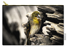 Perched Carry-all Pouch by Martin Newman