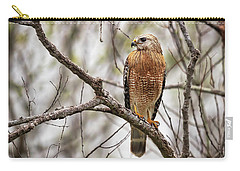 Perched Red Shouldered Hawk Carry-all Pouch