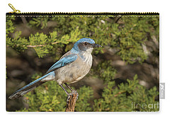 Perched Scrub Jay Carry-all Pouch