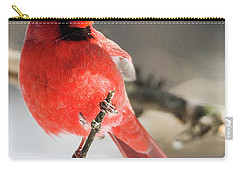 Perching Mister Cardinal Carry-all Pouch