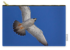 Peregrine Falcon I Carry-all Pouch