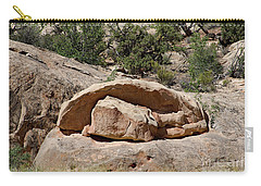 Carry-all Pouch featuring the photograph Perhaps Petrified by PJ Boylan