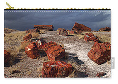 Carry-all Pouch featuring the photograph Petrified Forest National Park by James Peterson