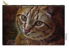 Pets Fat Cat Portrait 2 Carry-all Pouch