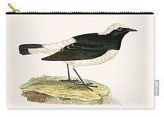 Pied Wheatear Carry-all Pouch