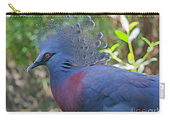 Pigeon Elegante Carry-all Pouch by Judy Kay