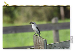 Pigeon-toed Shrike Carry-all Pouch