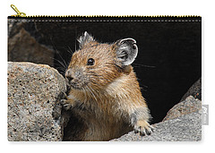 Pika Looking Out From Its Burrow Carry-all Pouch
