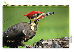 Carry-all Pouch featuring the photograph Pileated 2 by Douglas Stucky