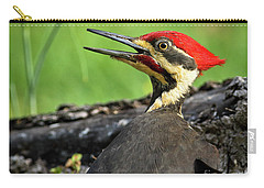 Carry-all Pouch featuring the photograph Pileated by Douglas Stucky