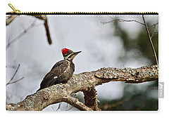 Carry-all Pouch featuring the photograph pileated Woodpecker 1068  by Michael Peychich