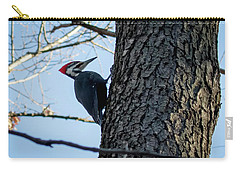 Carry-all Pouch featuring the photograph Pileated Woodpecker  by Ricky L Jones