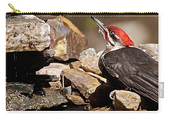 Pileated Woodpecker2 Carry-all Pouch by Loni Collins