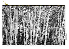 Pillars Of The Wilderness Carry-all Pouch by James BO Insogna