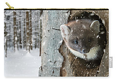 Pine Marten In Tree In Winter Carry-all Pouch