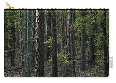Carry-all Pouch featuring the photograph Pine Wood Sunrise by Skip Willits